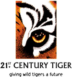 21st Century Tiger logo - giving wild tigers a future