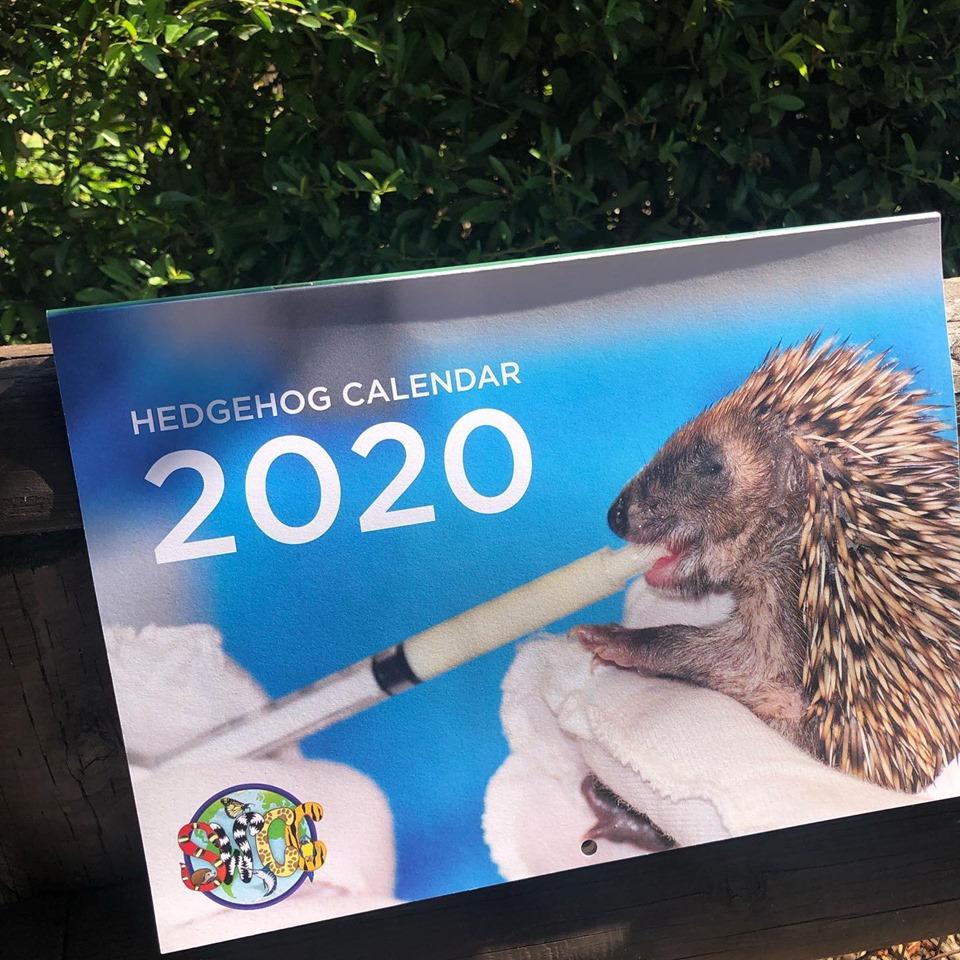 Hedgehog Calendar 2020